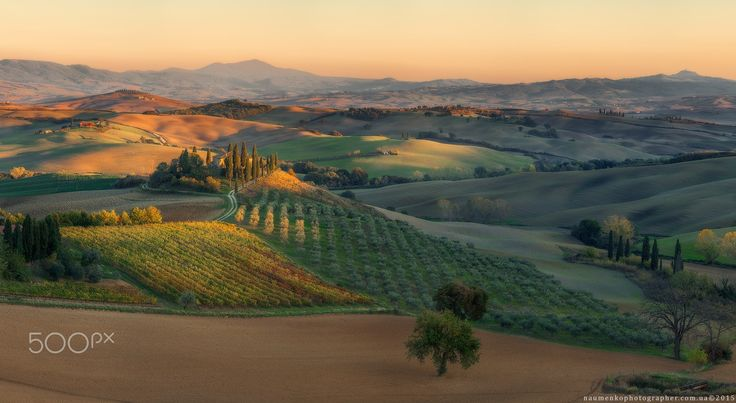 """Italy. Tuscany. Evening light in the Val d'Orcia - <a href=""""http://naumenkophotographer.com.ua/galereya/evropa/italy/valdorcia/eveningorcia.html%20""""> naumenkophotographer.com.ua</a> <a href=""""https://www.facebook.com/naumenkophotographer""""> www.facebook.com </a> Original size 176х97 cm., 300 dpi. Panorama 4 lines, 20 horizontal frame. Sony A7R + adapter Commlite EF-NEX for Canon EF + Canon EF 100-400mm f / 4.5-5.6L IS II USM. Date: 2/11/2015"""
