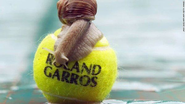 (35) #RG16 - Twitter Search