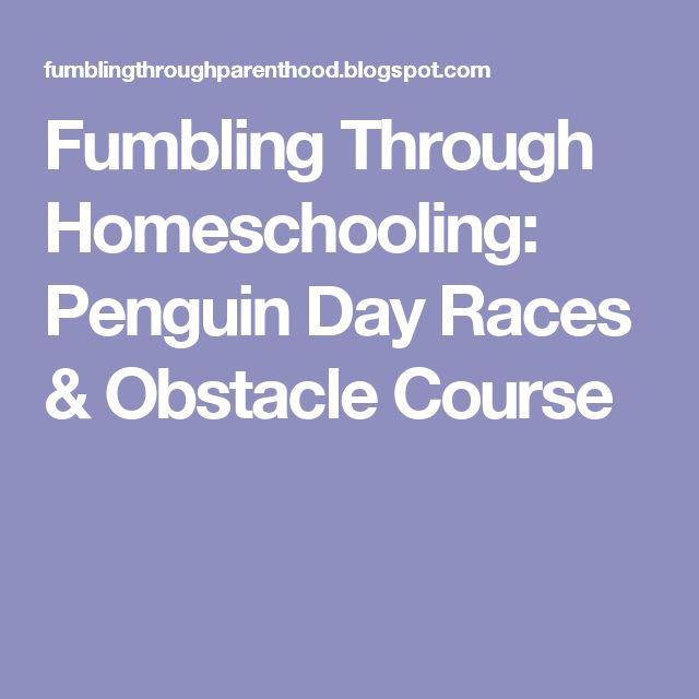 Fumbling Through Homeschooling: Penguin Day Races & Obstacle Course