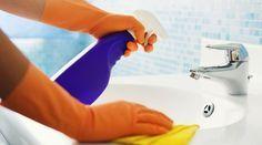 AG Personal Organizer : Como Limpar Banheiros!