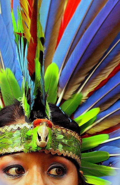 feather headress