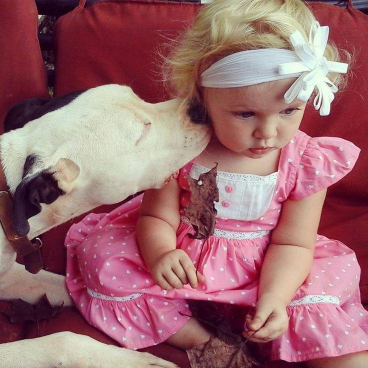 Clyde puszit oszt Eisleighnek  Pitbullok és gyerekek? - Hírek  #eisleighandclyde #pitbull #kutya #dog #baby #cute #kutyabaráthelyek #kutyabarathelyek