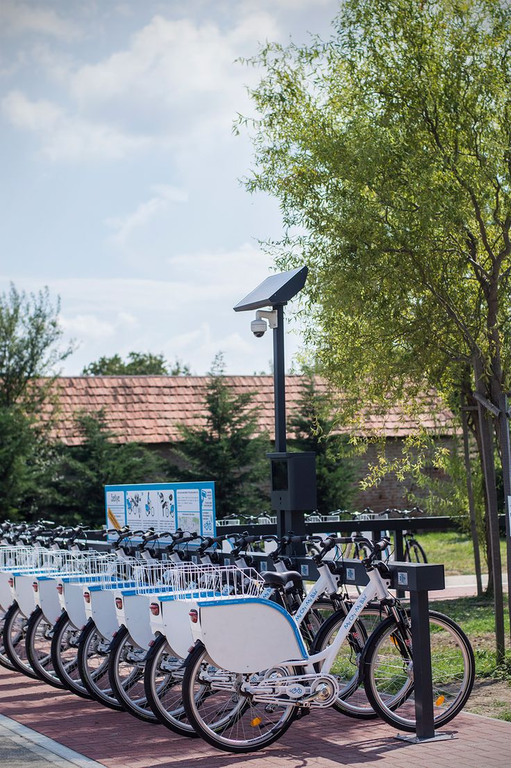 Electric Public Bike Rental System - Sellye station