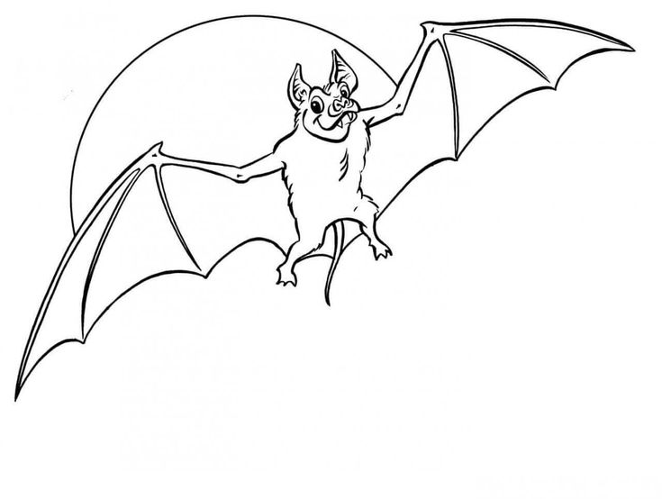 Bat Halloween Coloring Pageskids Coloring Pages Coloring