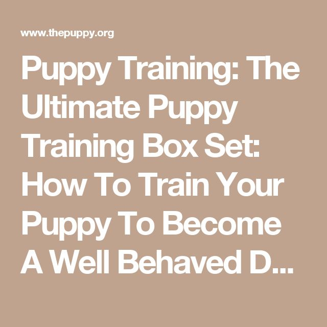 Puppy Training: The Ultimate Puppy Training Box Set: How To Train Your Puppy To Become A Well Behaved Dog & How To House Train A Puppy In 7 Days Or Less ... Training, Crate Training, Potty Training) | The Puppy | Dog food, costumes and equipment