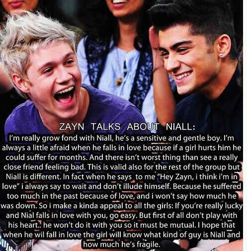 One Direction Niall Quotes: Twitter / TheBieberDesire: Zayn's Talk About Niall. I'm