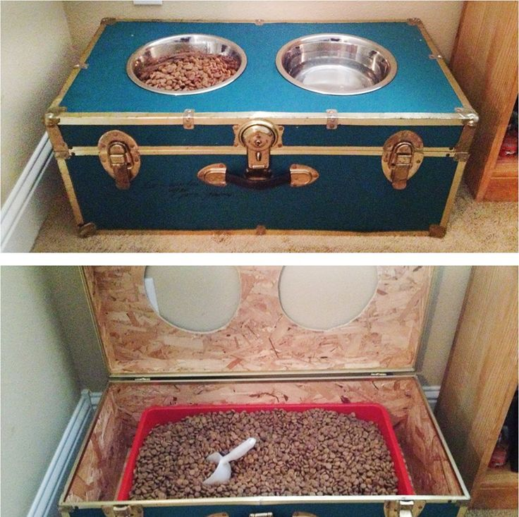 upcycle: Your old camp trunk to a feeding station for your big dog.