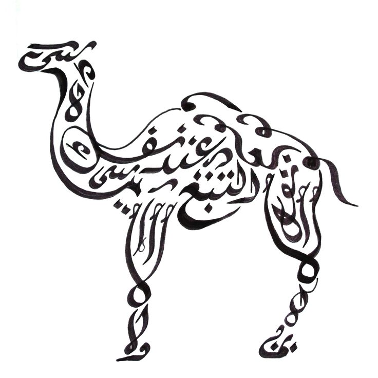 25 Best Ideas About Camel Tattoo On Pinterest Picasso