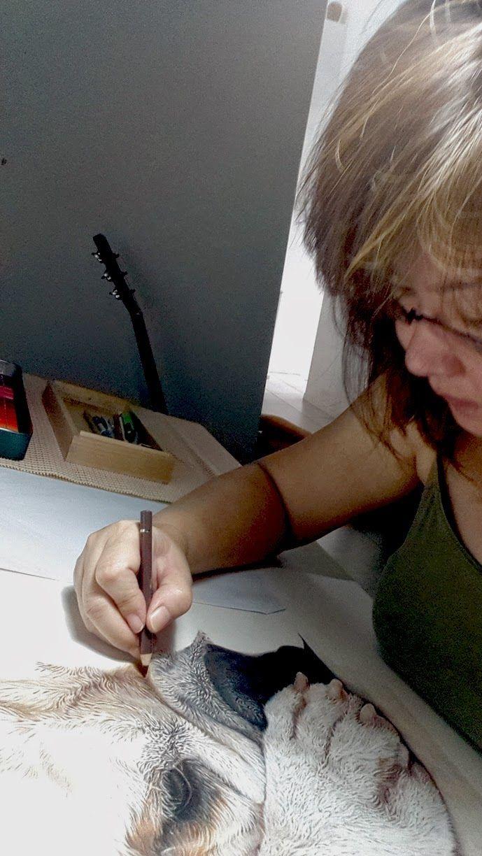 Coloured Pencils After 40: Contemplation