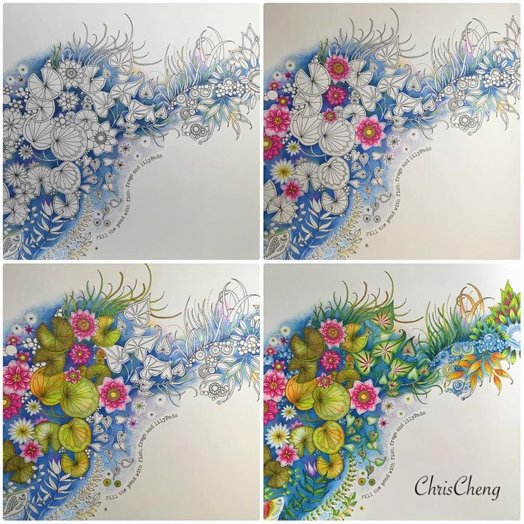 Video Link By Chris Cheng Find This Pin And More On Secret Garden Coloring Book