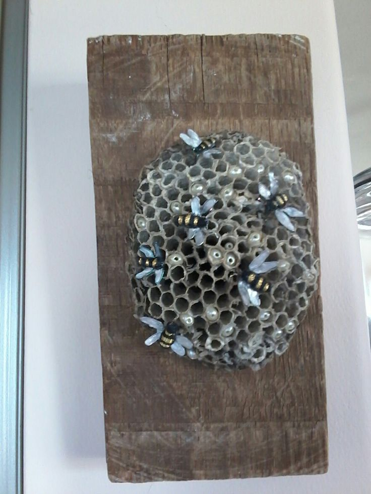 Stumpwork bees on a real nest.  Mounted on a old piece of barn wood.