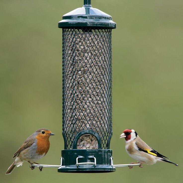 32 best Feed Da Birds images on Pinterest