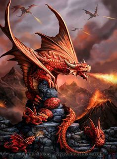I've made some adjustments to the Fire Dragon artwork I posted a while ago. More fire and more dragons!  Draco Ignis (commonly known as the Fire Dragon) has glands in its mouth that spit out a mixture of chemicals which ignite on contact with air. It is aggressive in nature, territorial and extremely dangerous. The adult, young and eggs are seen here together on lava rocks. Age of Dragons © Anne Stokes.