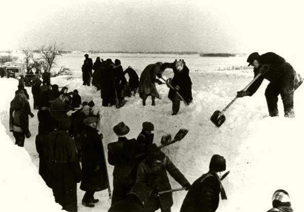 Elakadt tehergépkocsi-oszlop útját német utasításra a magyar lakosság teszi szabaddá 1945. február 5-én Székesfehérvárnál. (Bundesarchiv/183/1992/0714/502)