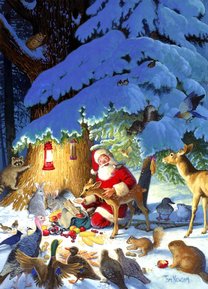 Boxed Christmas Cards Featuring Santa Claus And His Furry Animal Friends