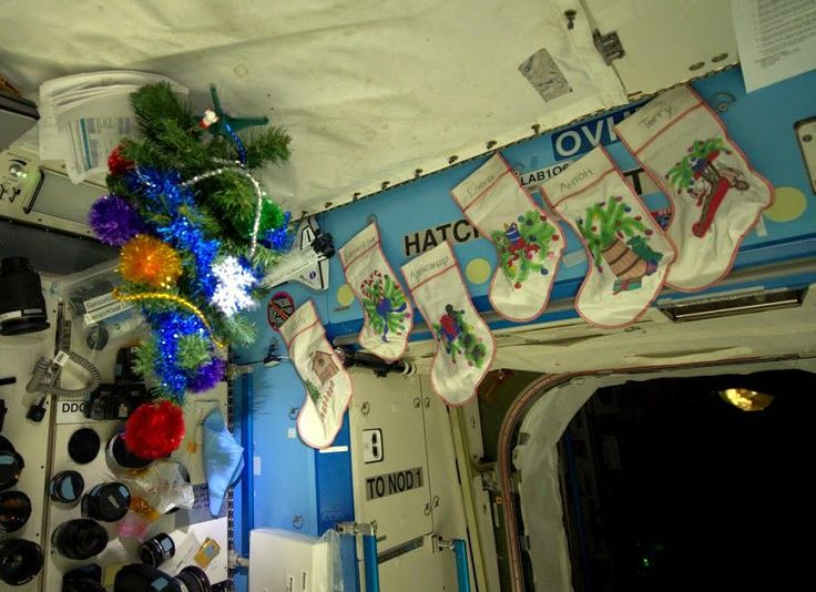 L+12: Logbook. #AstroButch  has set up our #xmas tree in the Lab & hung socks for us. https://plus.google.com/+SamanthaCristoforetti/posts/Svgb3oAdE3d…