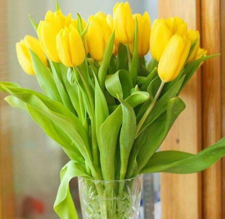 что будет желтые тюльпаны в вазе фото использует датчики смартфона