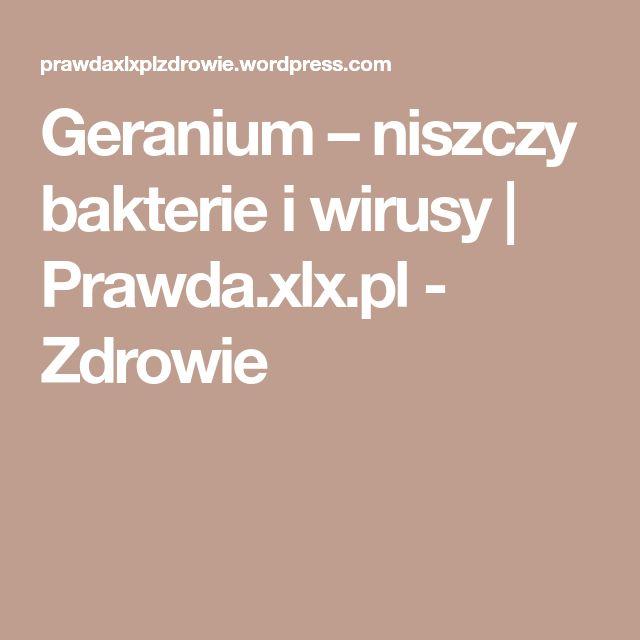 Geranium – niszczy bakterie i wirusy   Prawda.xlx.pl - Zdrowie