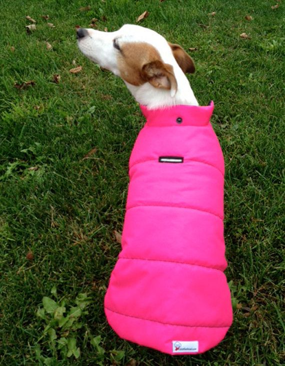 St Moritz Winter Dog Coat by Charliecloset on Etsy, $55.00