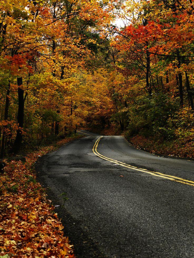 Casper Hill Road