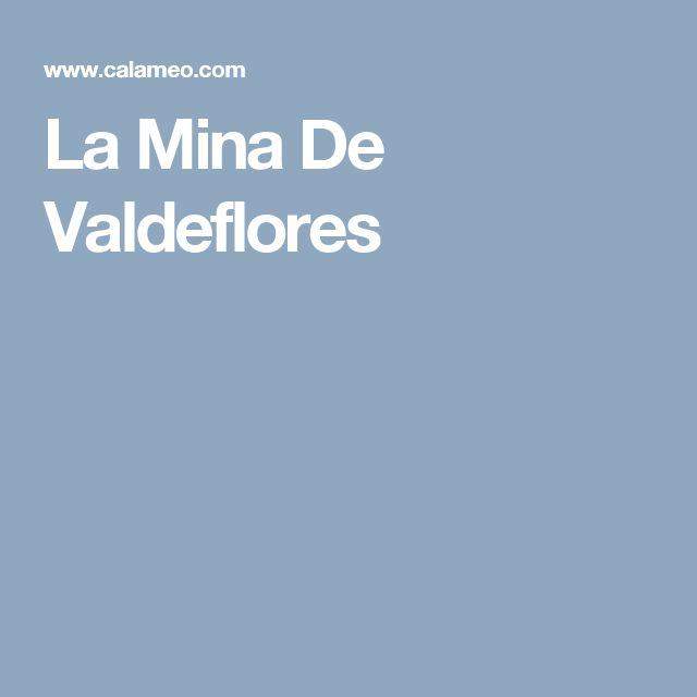 La Mina De Valdeflores