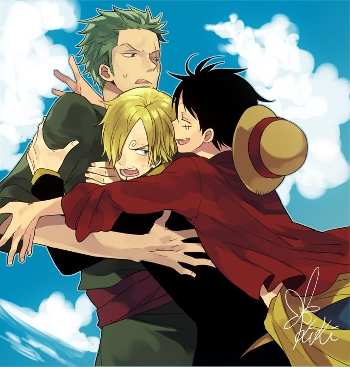 134 best zosan images on Pinterest | One piece, Roronoa ...  One