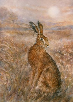 Moonlight Hare by Gary Benfield £435