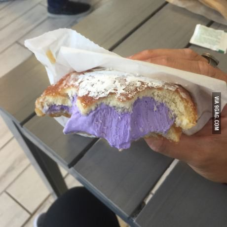 Hello Kalo (taro root ice cream) filled powder sugared glaze donut sandwich from Parlor Ice Cream in Sacramento, CA