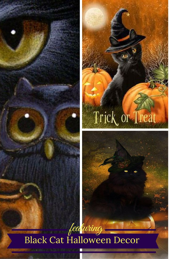Black Cat Halloween Decor Despite the folklore and superstition around black cats I absolutely love them. Year around but especially on Halloween. This is why I love to use creepy, spooky and wicked Halloween black cat home décor. You will find all kinds of creepy kitty cat decorative accents from black accent pillows to inflatable black cats to even some cute black and cat and witch décor.