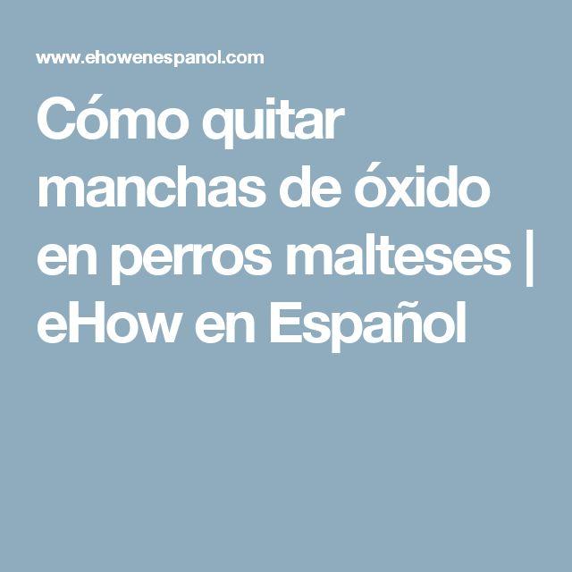 Cómo quitar manchas de óxido en perros malteses   eHow en Español