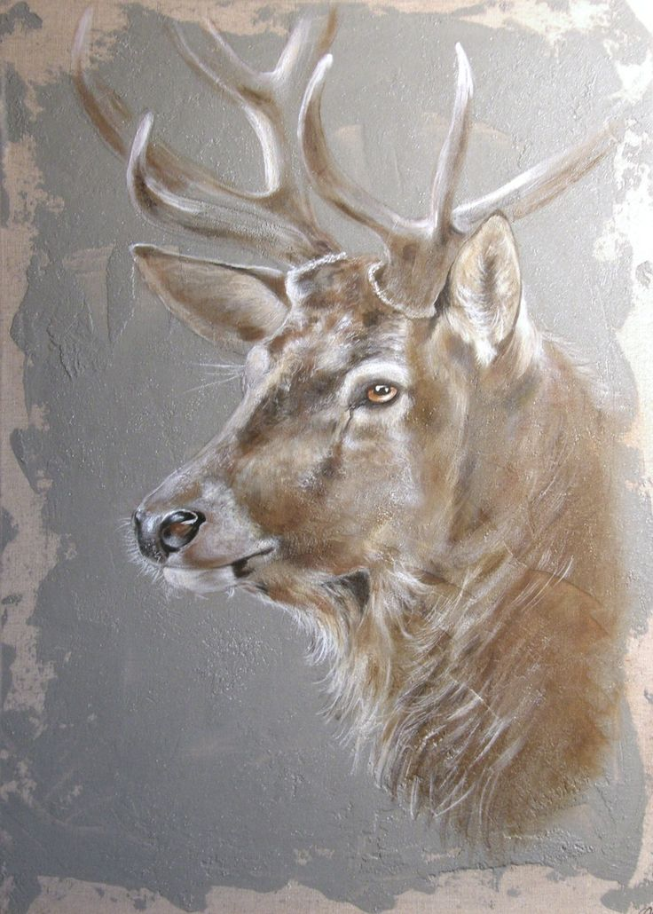 les sauvages, peintre animalier chasse, sologne - odilelaresche