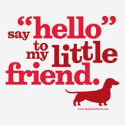 Funny Dachshund | Funny dachshund t-shirts and gifts for dachshund owners, wiener dog ...