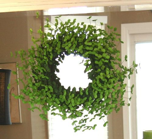 22 best 21 st. patrick's day home decoration ideas images on