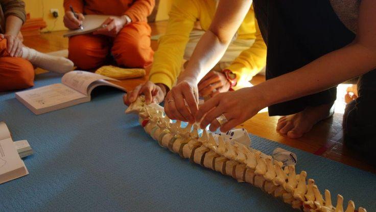 Asanas und Beweglichkeit der Wirbelsäule im Sivananda Yoga Seminarhaus i...