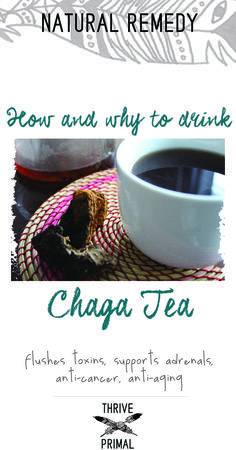 Chaga tea has so many benefits: potent antioxidants, supports the adrenals, immune system and digestion, and slows down any pre-cancerous cells! Here's how to make a good cup of Chaga tea.