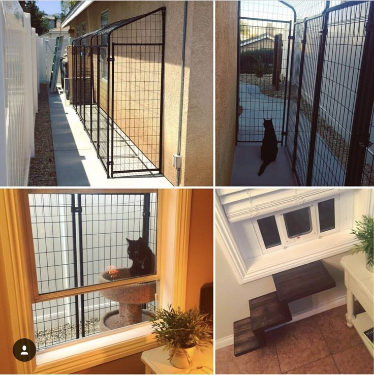 DIY Catio. Outdoor Cat Inclosure Made From 4x4 Dog Kennel