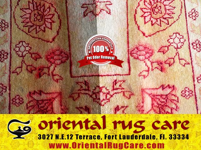 Area Rug Cleaning Process in Miami