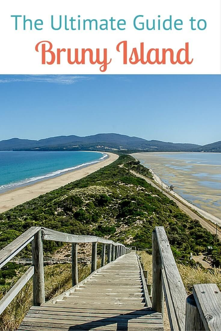 Things to do on Bruny Island, Tasmania