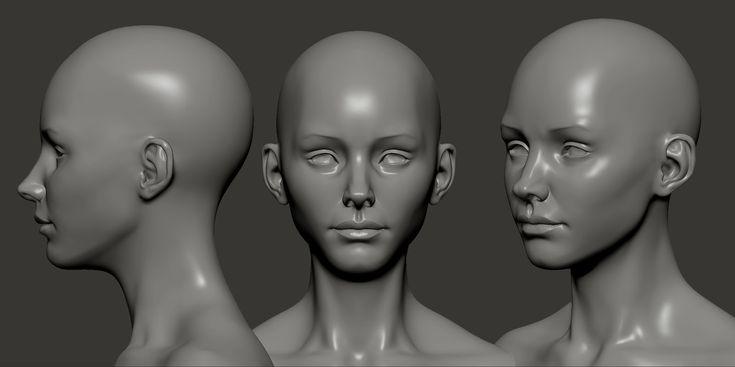 female+bust+10-3-13.jpg (1600×799)