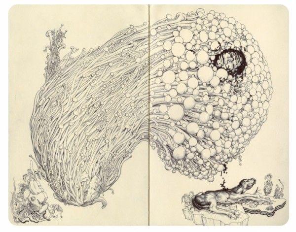 Sketchbook Drawings by James Jean