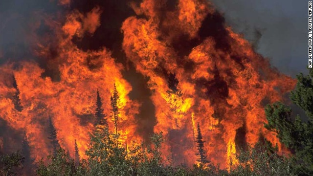 """Kari Greer's """"wildland fire"""" photo shows extreme fire behavior on the Blackhall Fire in Wyoming."""