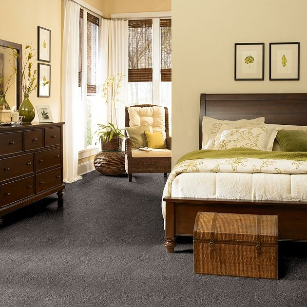 Carpet Having Fun - TV142 - Silver Tankard - Flooring by Shaw.     Gray carpet $2.50/yard?