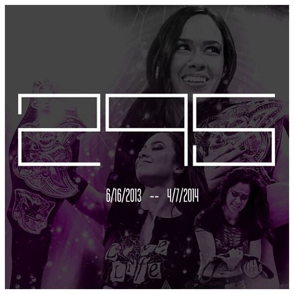 166 best images about AJ Lee on Pinterest | Shattered ...