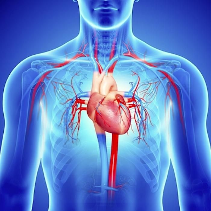Insuficiencia cardíaca: síntomas y causas
