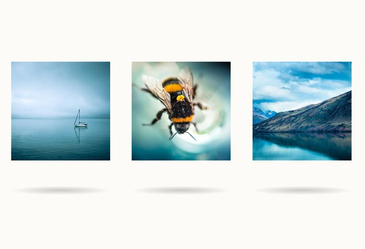 CSS 3D Image Flip Gallery With Dynamic Shadows, #3D, #Code, #CSS, #CSS3, #Gallery, #HTML, #HTML5, #Snippets, #Transition, #Tutorial, #Web #Design, #Development