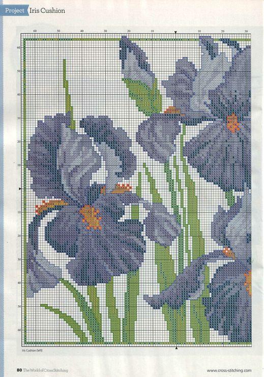 Iris - (2) Gallery.ru / Foto # 18 - 199 - miroslava388