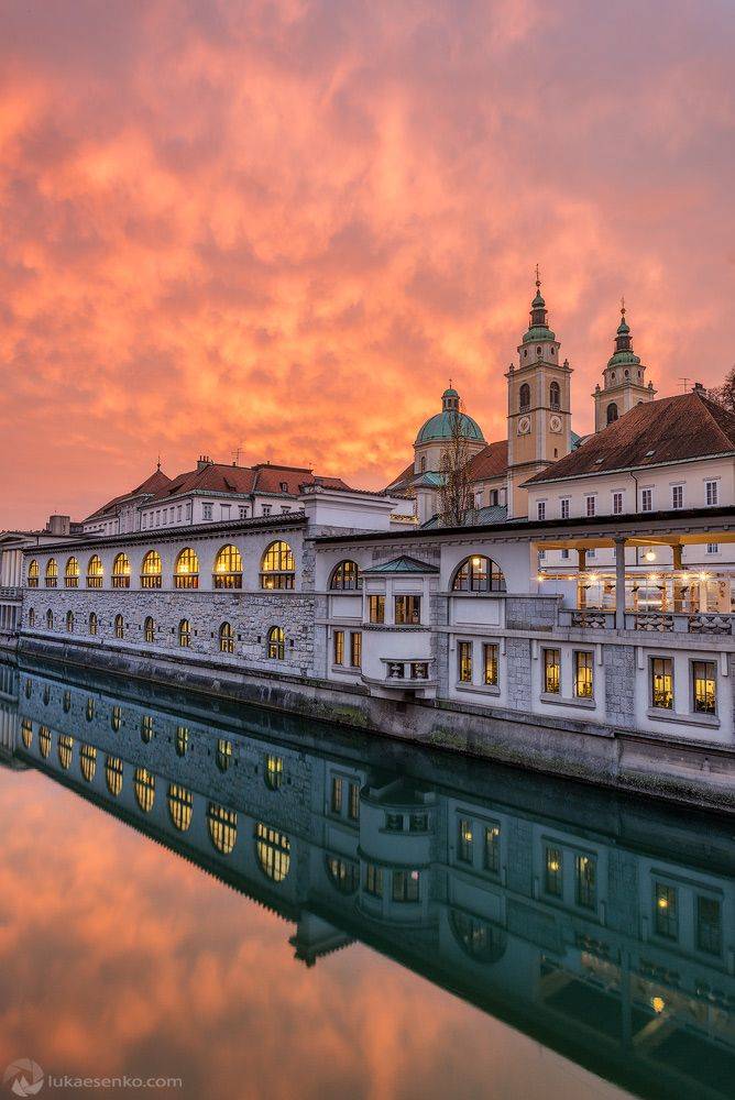 De rivier van Ljubljanica en de kathedraal. Sla deze stad niet over tijdens je roadtrip door Slovenië.