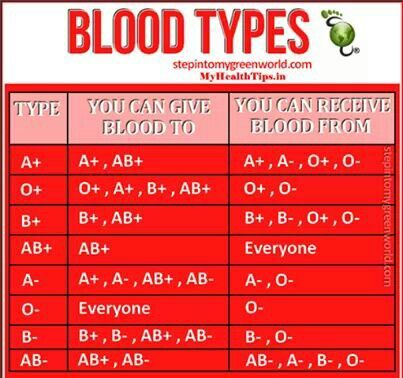 BLOOD TYPES (The negative and positive define if you are Rhesus (Rh) negative or positive.)