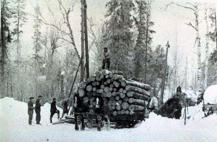 """Timber Tales: Marten River's """"Winter Camp"""""""