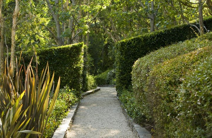 hedge / entrance.  Love the slope and the opening cut straight.